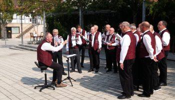 Männerchor- Chorprobe